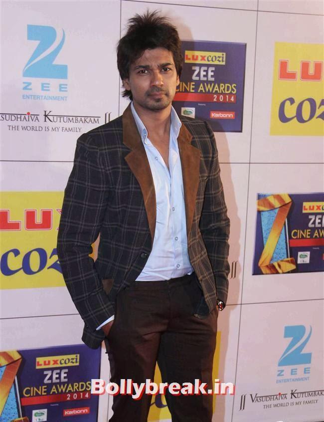 Nikhil Dwivedi, Zee Cine Awards 2014 Red Carpet Pics