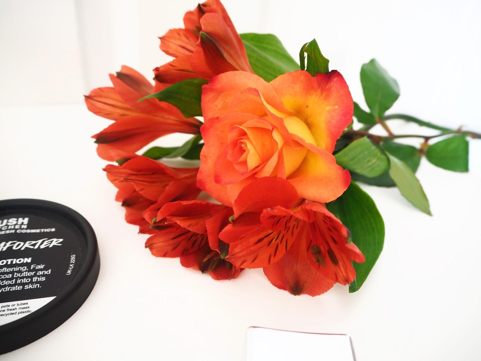 Loves List, September Favourites, Autumn Favourites, Orange Flowers, Flower Photography