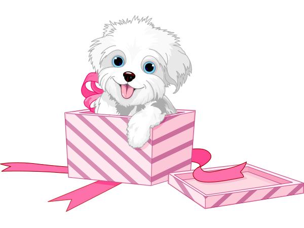 Cute Puppy Present