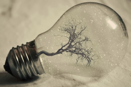 19-Photographer-Adrian-Limani-Life-in-a-Lightbulb-www-designstack-co