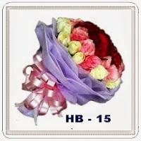 HB 15