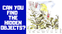 Can you Find the hidden objects?