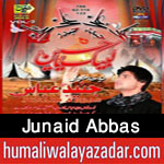 http://www.humaliwalayazadar.com/2015/10/junaid-abbas-nohay-2016.html