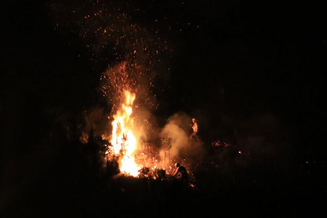 Efectivos de emergencias trabajan para sofocar las llamas