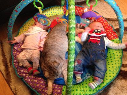Jasmine Cornish's babies and cat