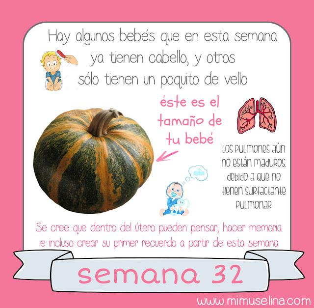 album recuerdos libro información bebé feto evolución semana a semana del embarazo semana 32 bebé tamaño calabaza