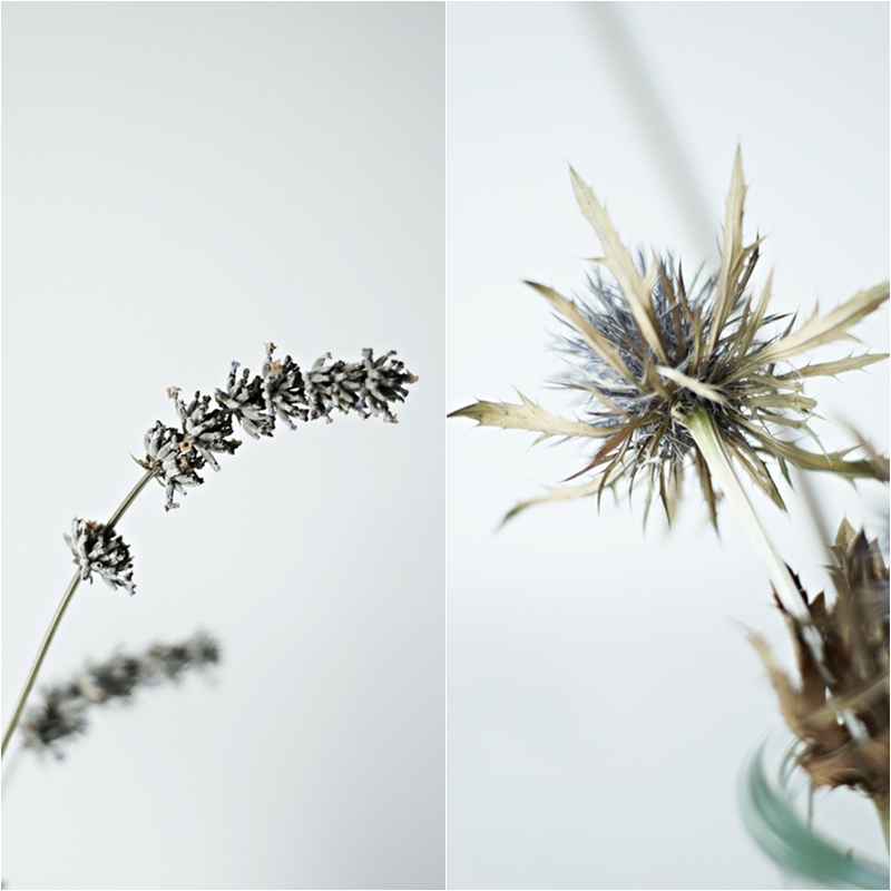 Blog + Fotografie by it's me! - Collage aus getrockneten Blumen