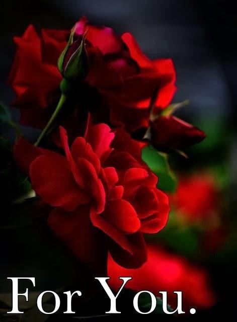 Imagenes De Flores Para Mi Amor