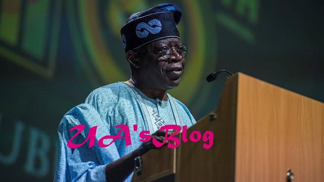 2023: Tinubu, Igbo Will Never Be Nigeria President – Miyetti Allah Declares