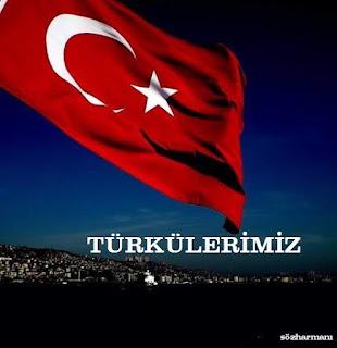 türküler, türkülerimiz, türkü sözleri c, çökertme sözleri, çemberimde gül oya, çay benim çeşme benim, cevizin yaprağı dal arasında, celal oğlan,