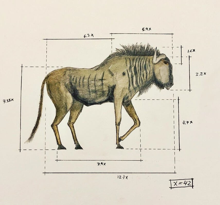 06-Kudu-Ran-Shapira-Animal-Drawings-from-a-Sculptor-s-Perspective-www-designstack-co