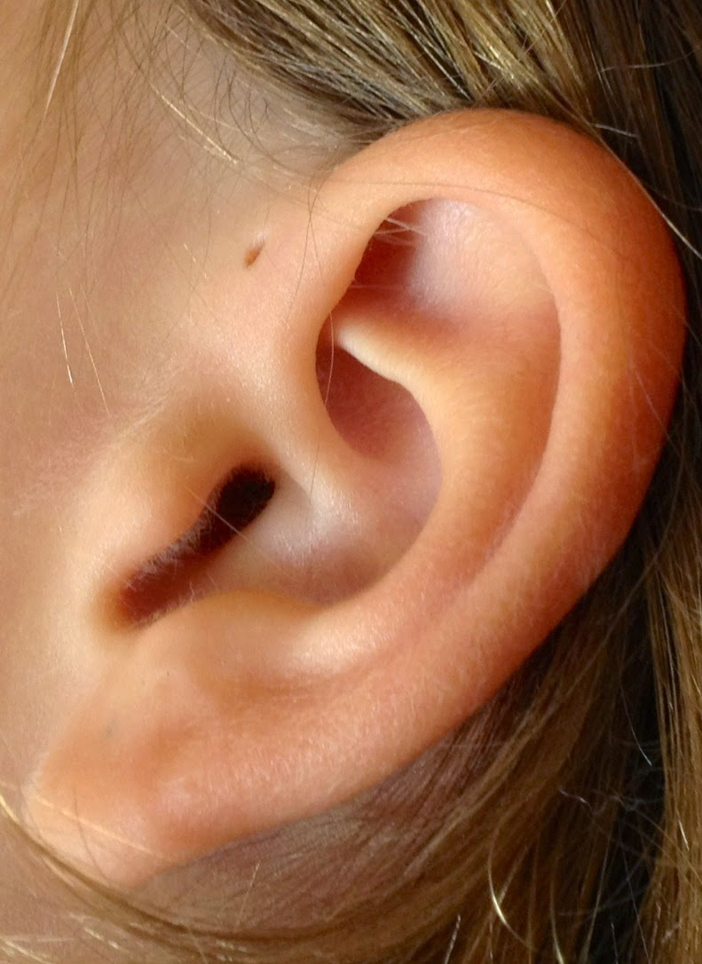 What was a small hole near the ear | Try to Know Everything