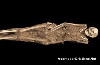 Momia egipcia con tatuaje
