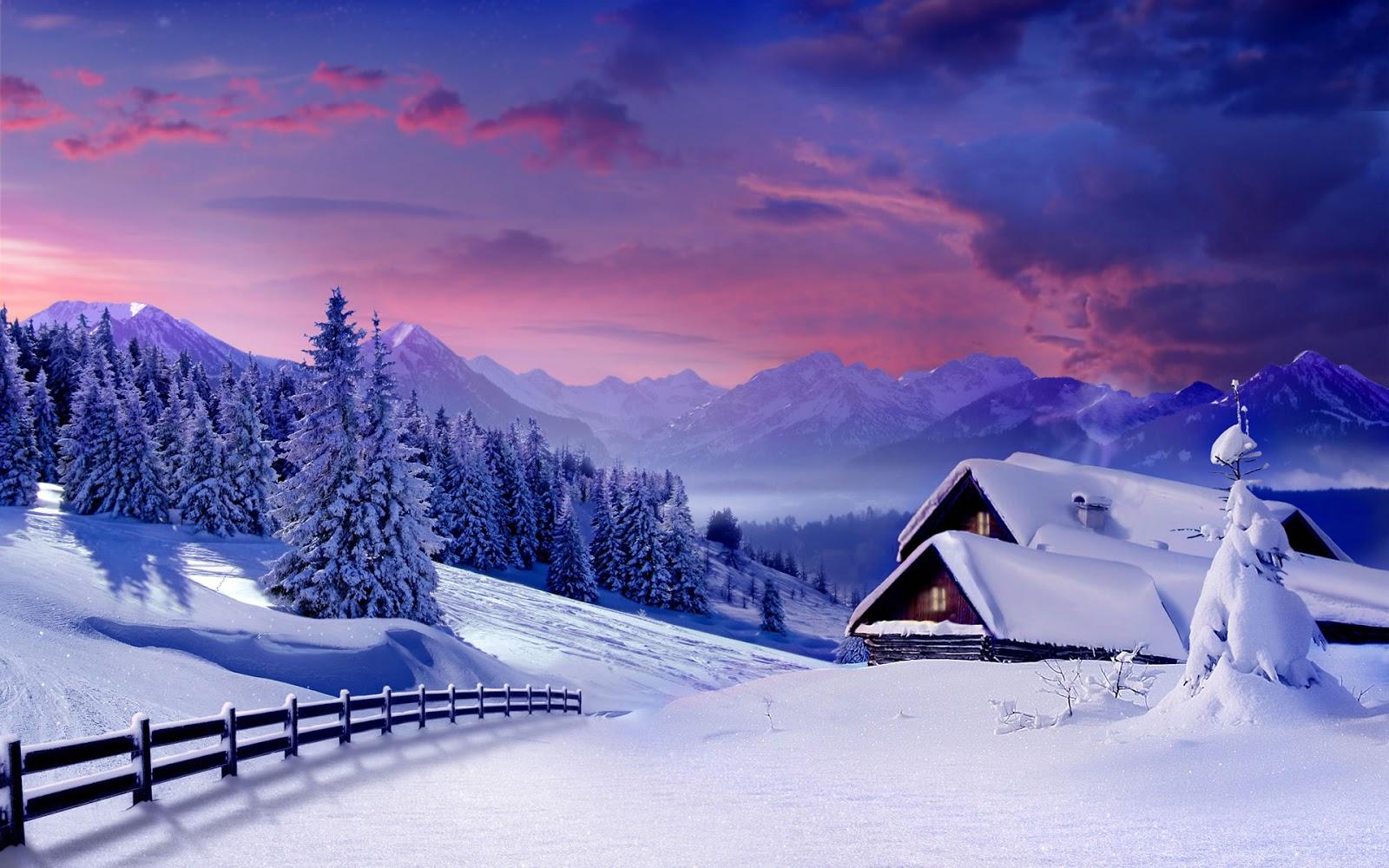 Gallery Wallpaper Winter
