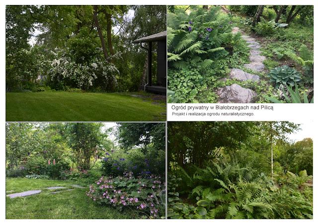 projektowanie ogrodów naturalistycznych