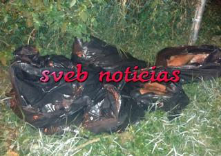 Hallan 11 bolsas con restos humanos de al menos 4 personas en Xalapa