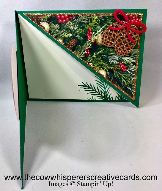 Card, Christmas Pines, Pretty Pines Thinlits Dies, All is Bright Designer Series Paper, Fancy Fold