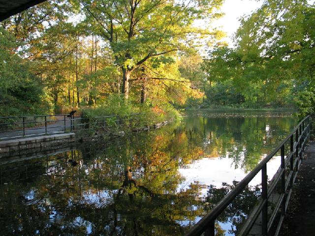 Parque Vondelpark em Amsterdã - lago