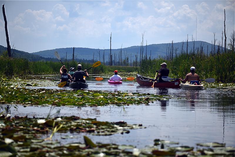 Hudson Valley Kayaks - Kayak Rentals Brought to Each Venue: Photo