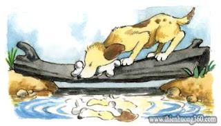 Con chó và cái bóng | Truyện ngụ ngôn cho bé