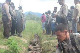 Kopi Sianida Diulas, Kekerasan Papua disembunyikan