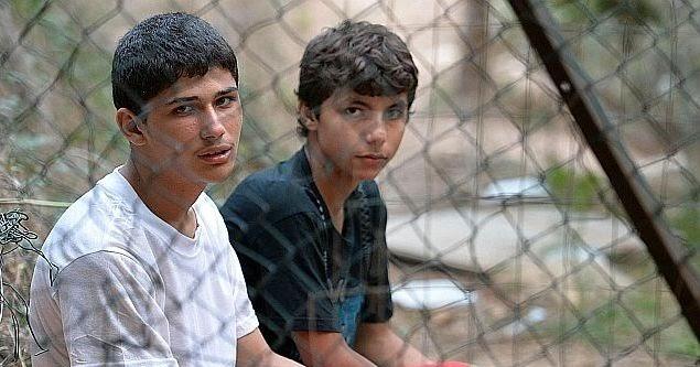 Minori Stranieri Affidati O In Tutela Rilascio Del Permesso Di Soggiorno Alla Maggiore Eta Minori Stranieri Non Accompagnati