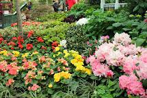 Gardening And Gardens Spring Flower & Garden Show