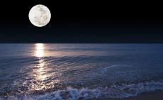 Puisi : Bulan