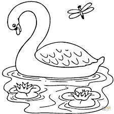 Cute Swans And On River Coloring Sheet For Print