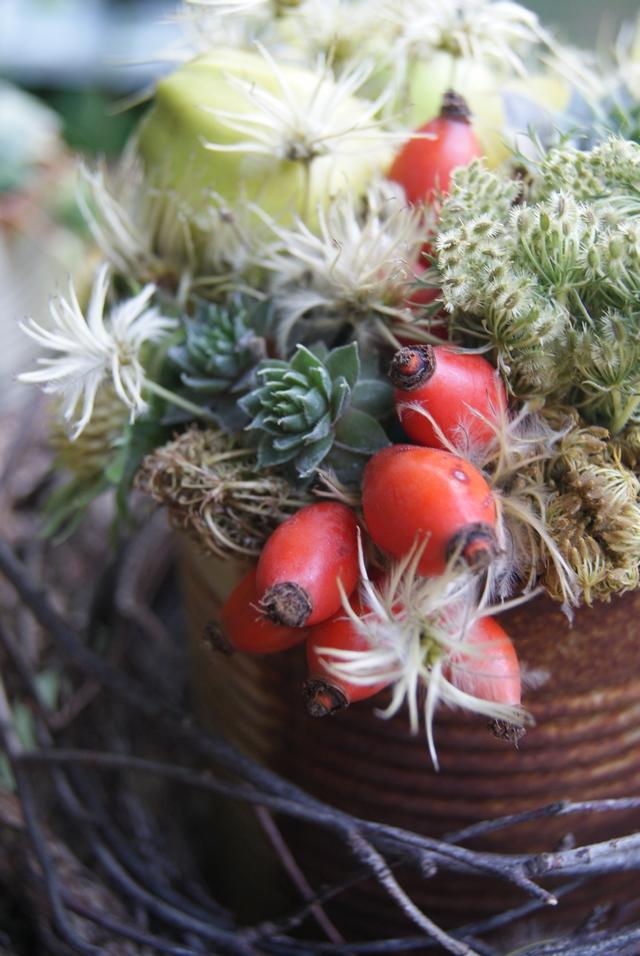 Hagebutten, wilde Möhre, Clematis, Äpfel und Semperviven für Herbstgesteck