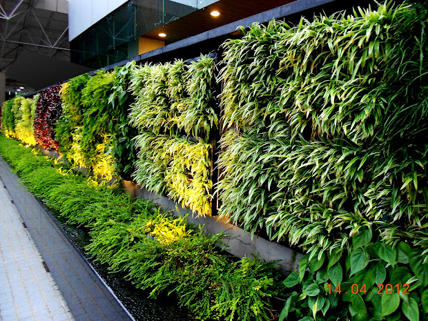 Agro-wall Vertical Garden Planting System