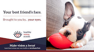 May is Healthy Vision Month: Learn How to Keep Your Eyes Healthy and Safe