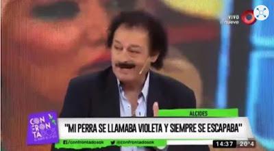 Alcides - Violeta (La verdadera historia de la canción)