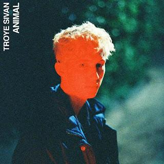Lirik Lagu Troye Sivan - Animal dan Terjemahan - Pancaswara Lyrics