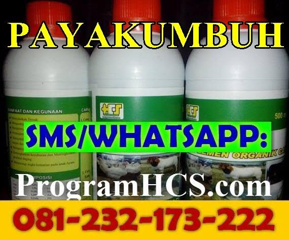 Jual SOC HCS Payakumbuh