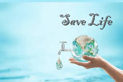 Six Painless Ways to Save Plenty of Water💧