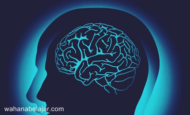 Memahami Pengertian Intelegensi