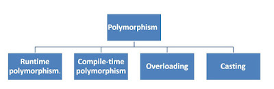 Polymorphism Category
