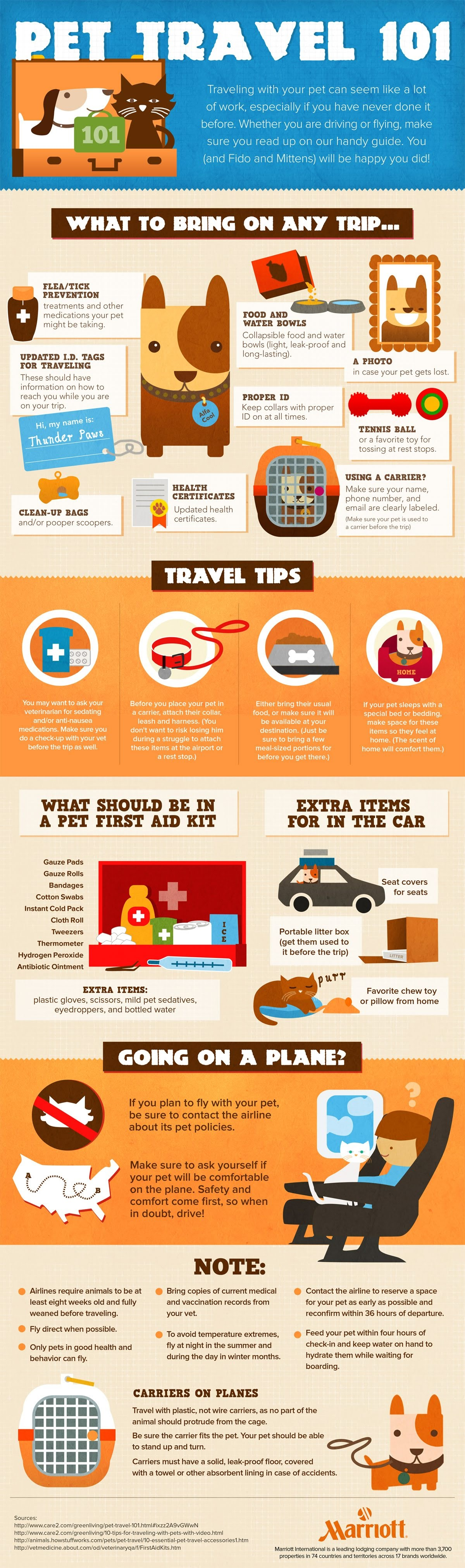 Pet Travel 101 #infographic