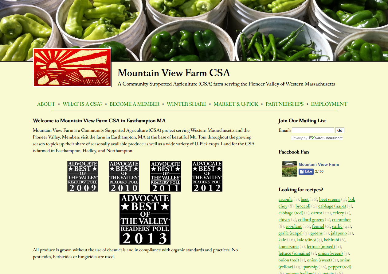 Web Design & Development in Western Massachusetts