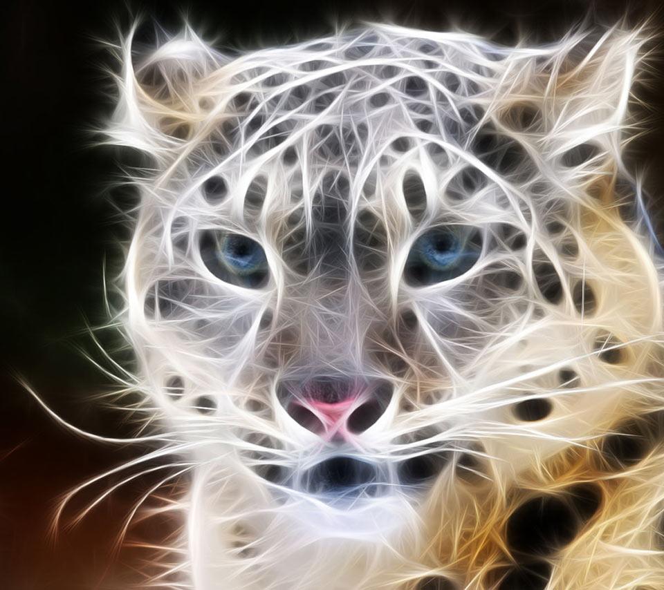 Nice Animals Fractal