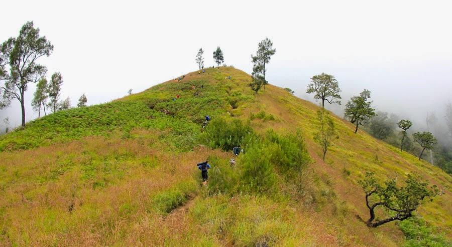 Bukit penyesalan ketinggian 2000 m dpl Taman Nasional Gunung Rinjani