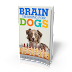 Training Your Dog To Do Chores - Brain Training For Dogs