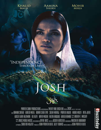Poster Of Josh 2013 Pakistani 300MB HDRip 480p ESubs Watch Online Free Download downloadhub.net