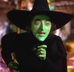 an analysis of the wicked witch of oz This one-page guide includes a plot summary and brief analysis of wicked by gregory maguire remembered across oz as the cruel wicked witch of the west.