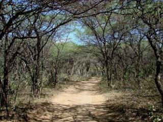 """carretera de Tupure4"""