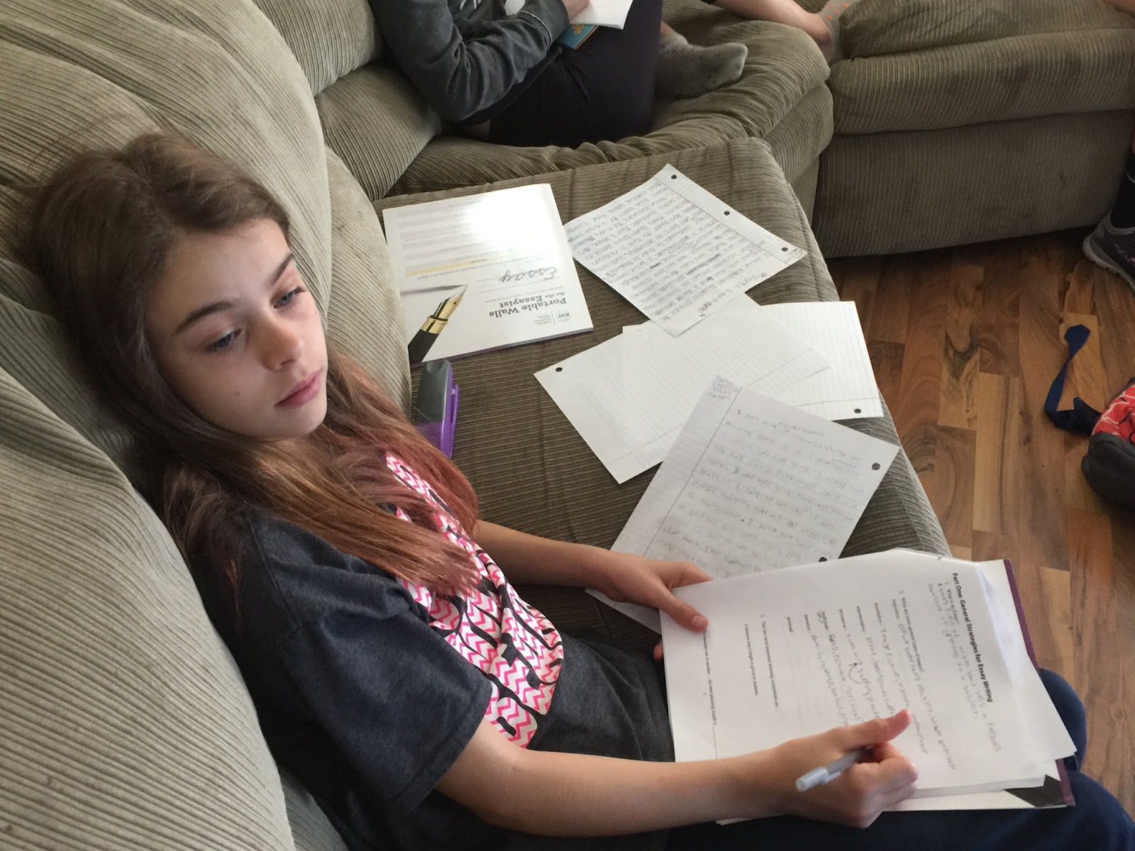high school intensive essay I have a high school senior who is looking at college options, so i was excited to have the chance for him to review the high school essay intensive program from.