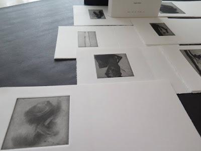 livre d'artiste Denise Pelletier Brigitte Maillard