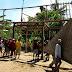 "KTB (Komunitas Tanggap Bencana) Relawan Nyambi ""Makelar"" Kini Ketiban ""Pulung"""