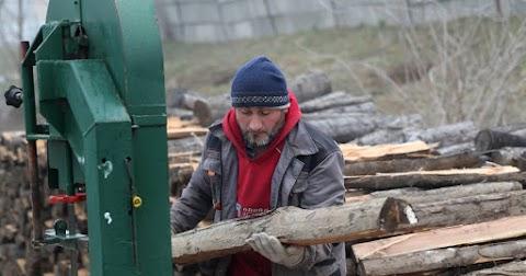 Könnyen bevihetnek a sűrűbe a tisztességtelen fakereskedők